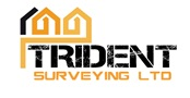 Trident Surveying Ltd logo